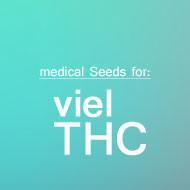 THC-reiche Sorten