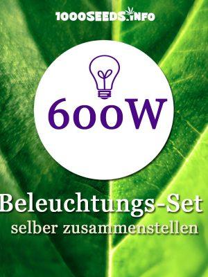 Beleuchtung-600W, Set