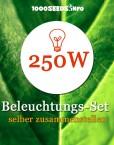 Beleuchtungs-Set-250W