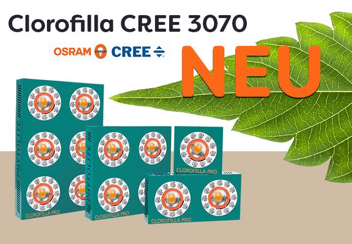 Clorofilla-CREE LED