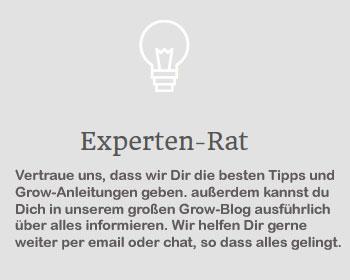 Experten-Rat, Growberatung
