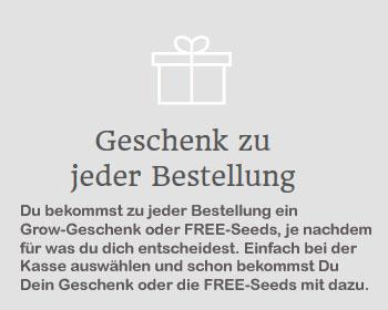 Gratis Geschenke, Seedshop