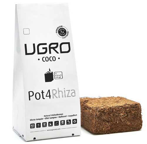 Pot4-Rhiza