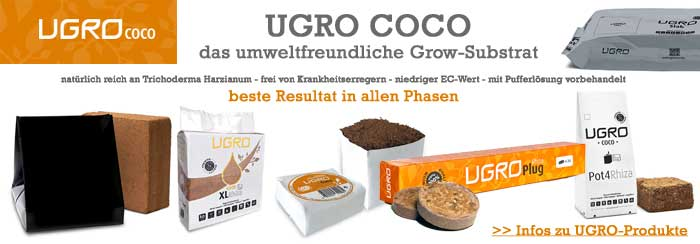 Coco-Substrat kaufen