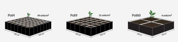 Koko-Pots, Growshop