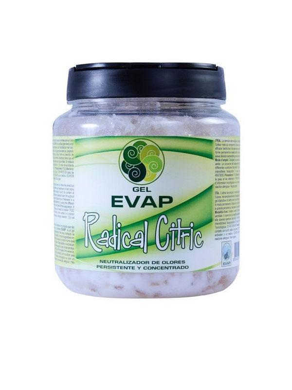 Evap-Raumduft