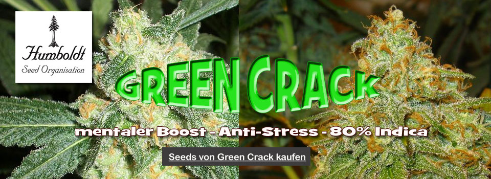 Green-Crack