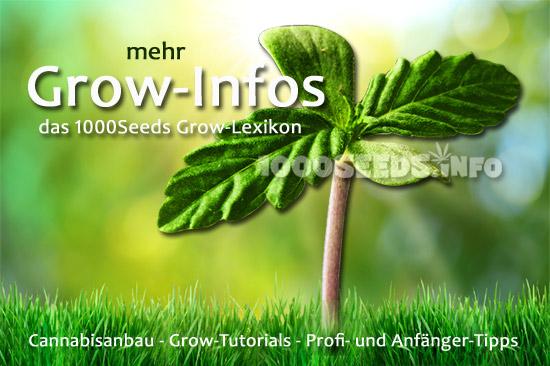Grow-Infos