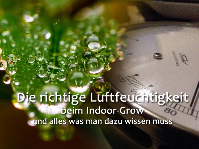 Luftfeuchtigkeit-Indoor