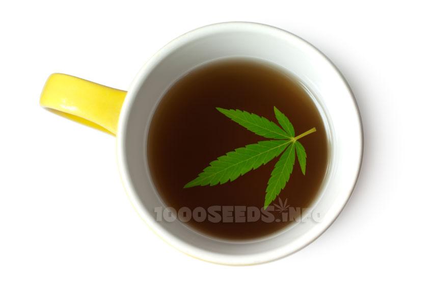 Cannabis-Tee