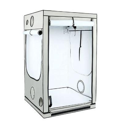 Homebox Ambient Q 120
