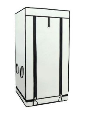 Homebox Ambient Q 60