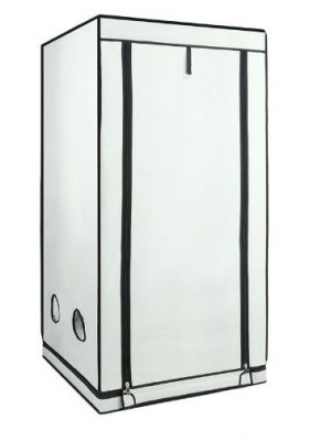Homebox Ambient Q 80