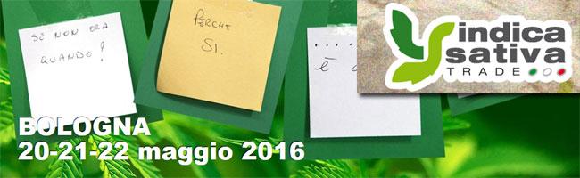 Indica-Sativa 2016