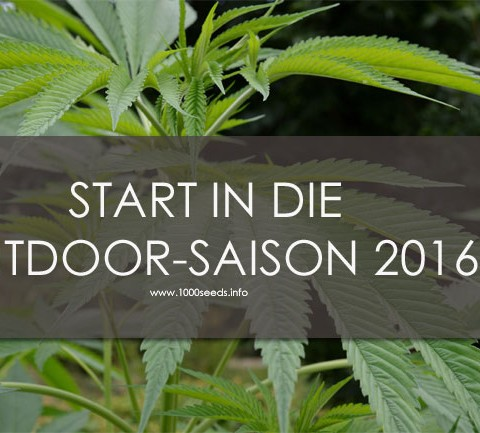Start in die Outdoor Saison 2016