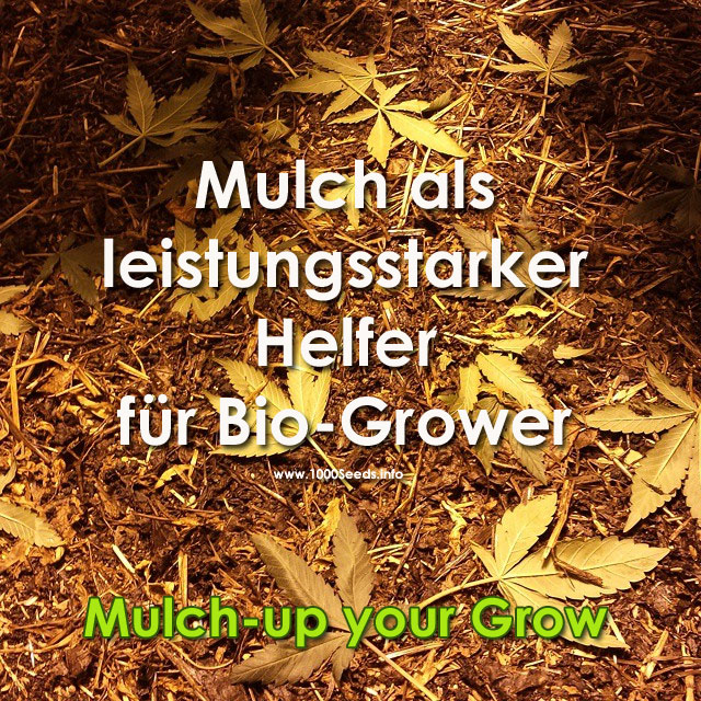 Mulching Grow