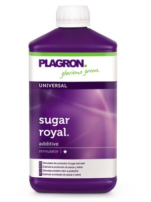Sugar-Royal-Plagron
