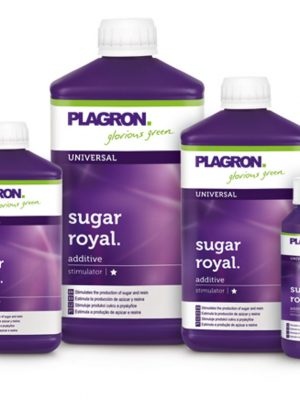 Sugar Royal von Plagron