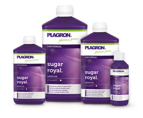 Sugar Royal von Plagron