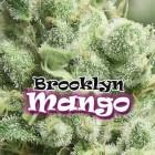 Brooklyn Mango von Dr Underground