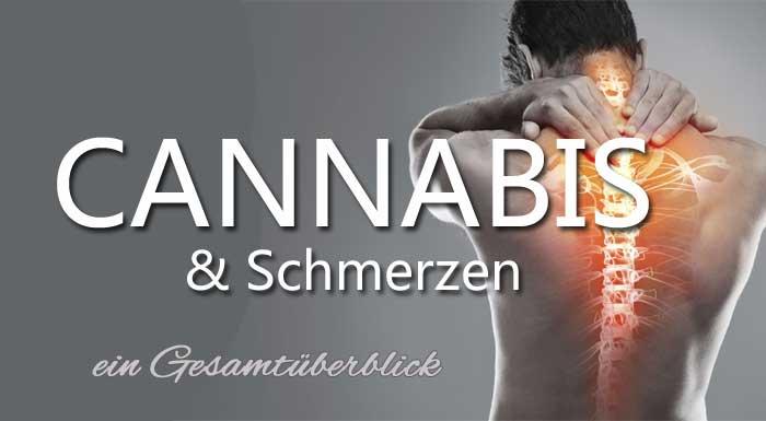 Cannabis-Schmerz