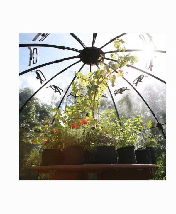 Haxnicks Sunbubble