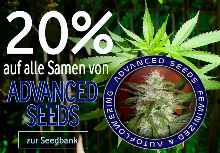 Advanced-Prozente Seedbank