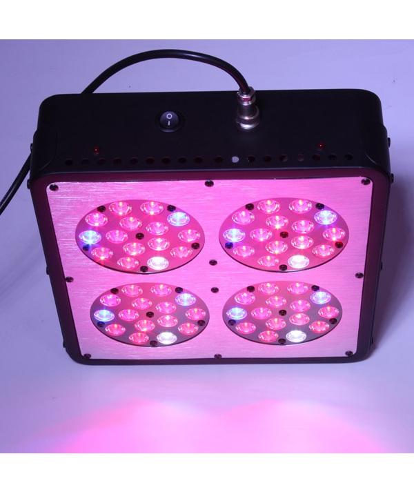 LED-VDL