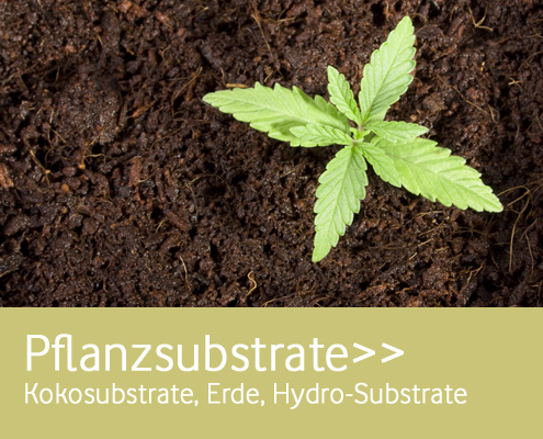 Pflanzsubstrate