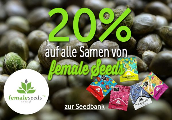 female Seeds Prozente