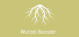 wurzel-booster-cannabis