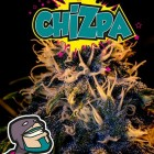 Chizpa von Positronics