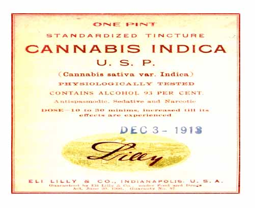 Lilly medical Marijuana
