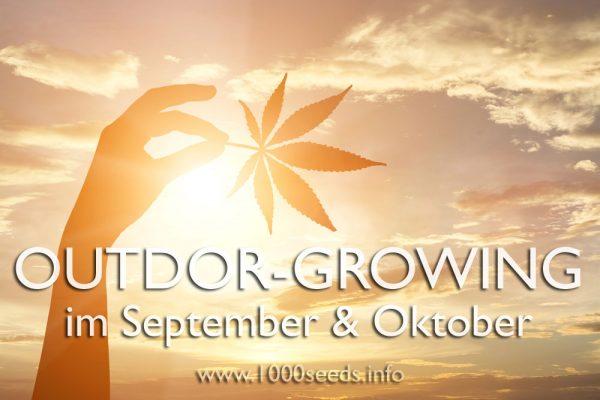 outdoor-growing