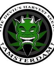 Devils Harvest