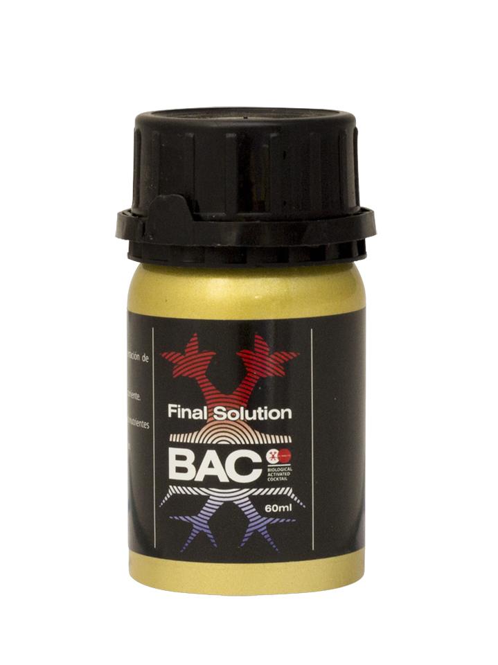 Final Solution von BAC