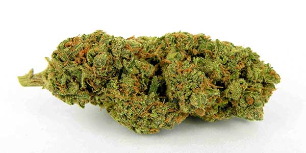 getrocknete-cannabis-buds