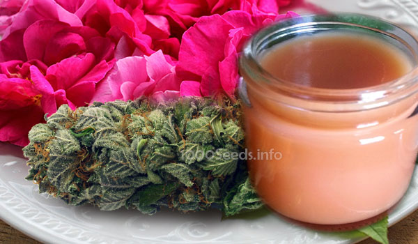 cannabis-rosen-creme