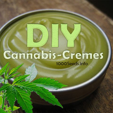 diy-cannabis-cremes