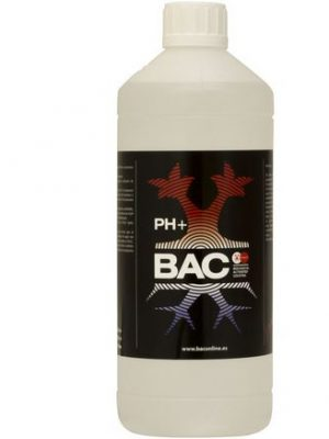 pH up von BAC