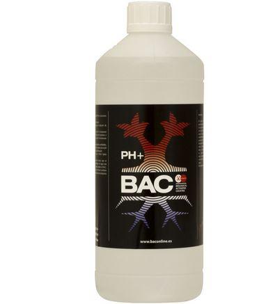 pH up von BAC