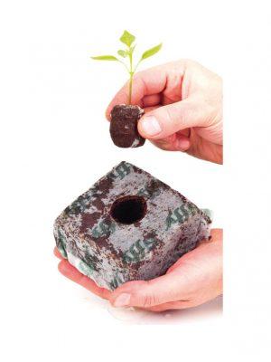 Jiffy-Block kokos