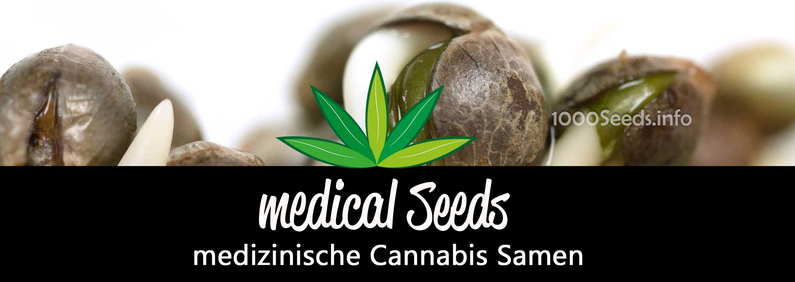 medical-Cannabis-seeds