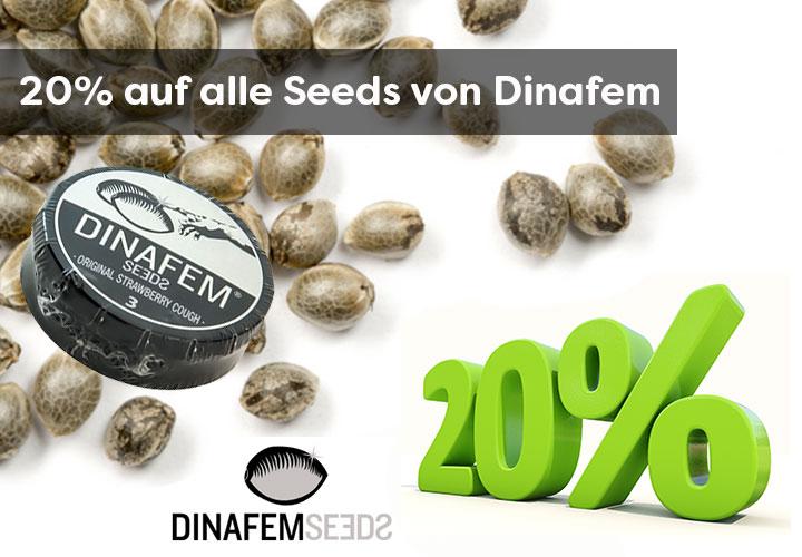 Im Februar gibt es 20% auf alle Samen von Dinafem Seeds