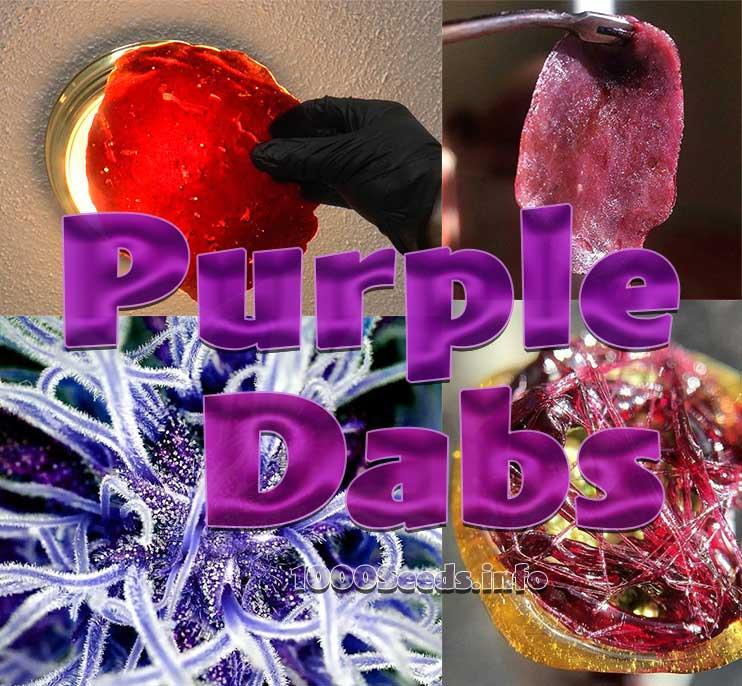 Purple Rosin