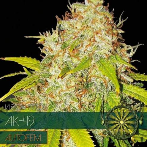 AK-49-Autofem