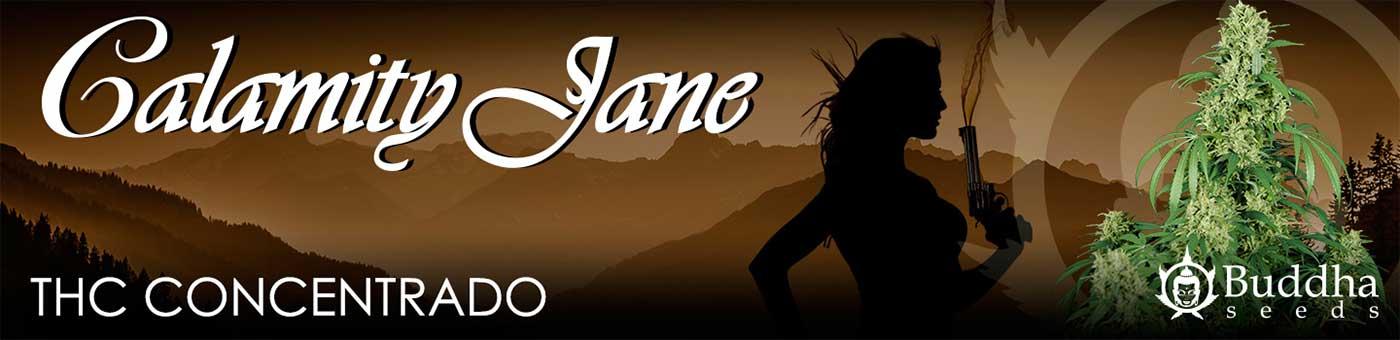 Calamity-Jane