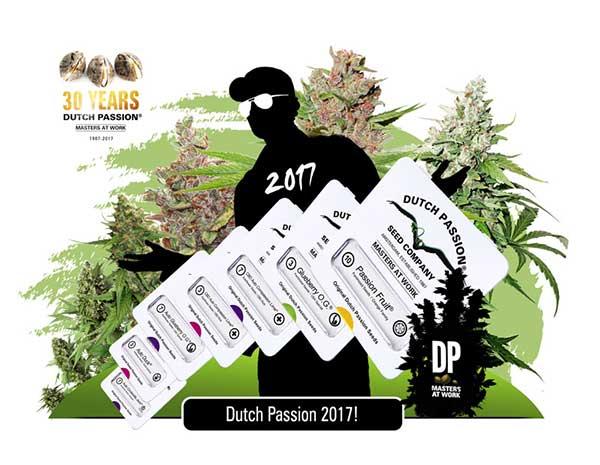 Dutch-Passion-neue-Sorten