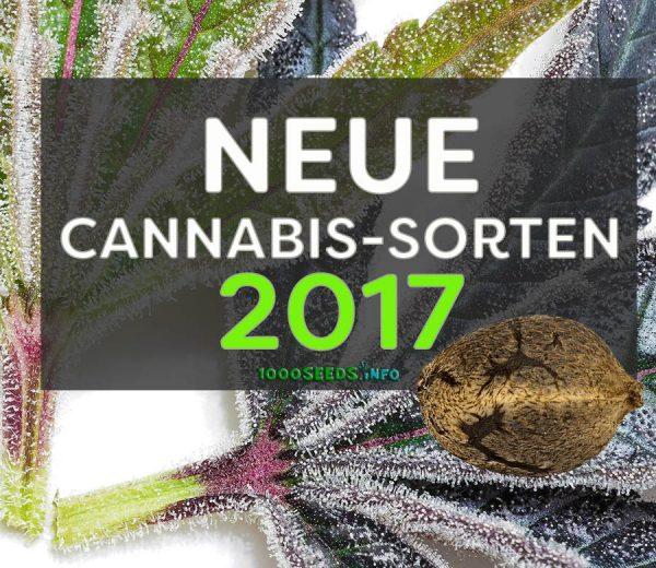 Neue-Cannabis-Sorten 2017