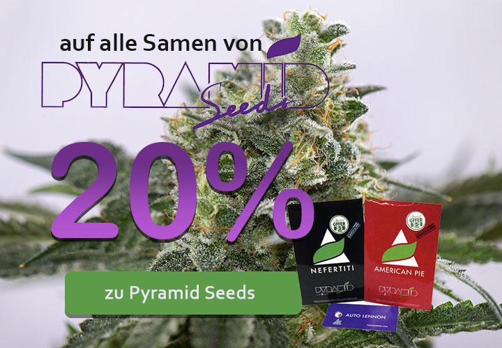 Im April gibt es 20% auf alle Samen von Pyramid Seeds